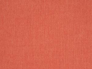 Canvas Persimmon